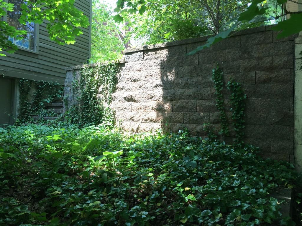 Sivyer wall 2